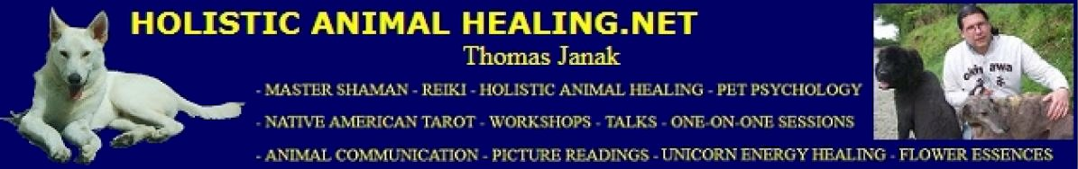 Holistic Animal Healing.net